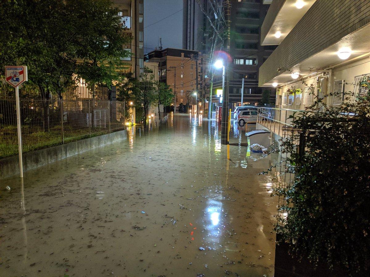 うんこ 武蔵 タウン 小杉